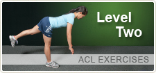 Level Two ACL Exercises