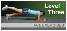 Level Three ACL Exercises